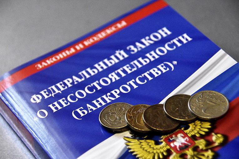 НКО, признанная Минюстом иноагентом, просит признать себя банкротом